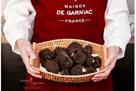 Fresh Summer Truffles (tuber aestivum Vitt.): will be back in may