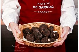 Truffes d'été fraîches - Tuber aestivum