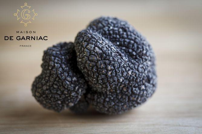 Truffes fraîches - tuber melanosporum (truffes noires)